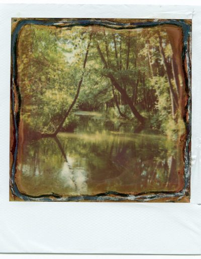 Polaroid_2016_007-7