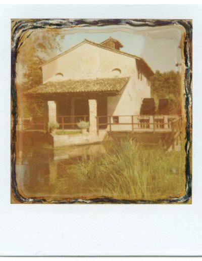 Polaroid_2016_013-11
