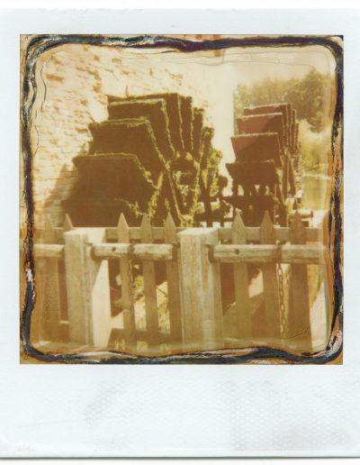 Polaroid_2016_016-14