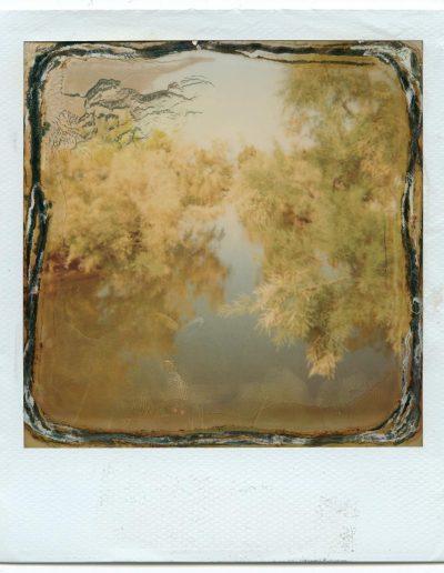 Polaroid_2016_031-24