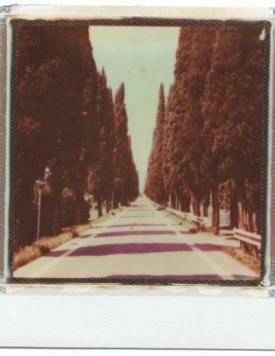 Polaroid_2016_033