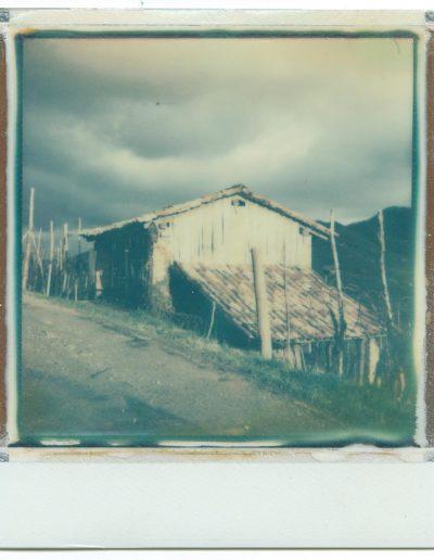 Polaroid_2016_053